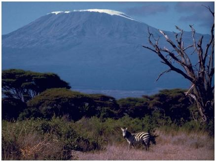 Kibo, a peak of Mount Kilimanjaro in Tanzania, is the highest point in Africa, at 19,340 feet (5,895 meters). (Reproduced by permission of JLM Visuals.)