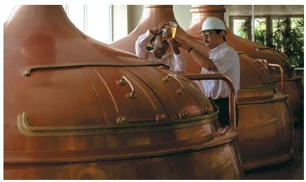 A brewmeister and fellow worker inspect the current batch of a local beer in a brewery in the Dominican Republic. (Reproduced by permission of The Stock Market.)