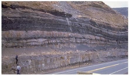 A coal seam in northwest Colorado. (Reproduced by permission of JLM Visuals.)