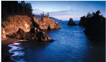 The coast of the Pacific Ocean in Boardman State Park, Oregon, an example of an emergent coast. (Reproduced by permission of Photo Researchers, Inc.)