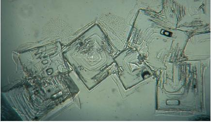 Salt crystals magnified to 40 times their original size, displaying its crystal lattice. (Reproduced by permission of JLM Visuals.)