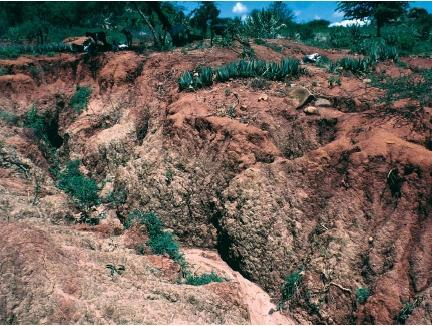 Erosion body used water earth form animals air parts waves severe soil erosion brought about by animals overgrazing and vegetation being cleared in kenya sciox Images