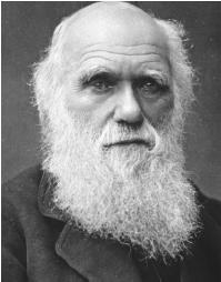 Charles Darwin. (Reproduced by permission of Archive Photos, Inc.)