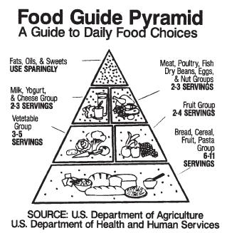 The food pyramid developed by the U.S. Department of Agriculture. (Reproduced by permission of the U.S. Department of Agriculture.)