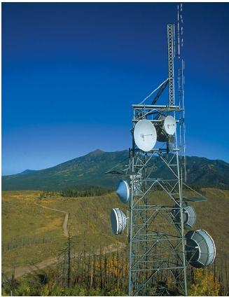 Radio towers on Elden Mountain above Flagstaff, Arizona. The size of each transmitting antenna matches the wavelength of the signal it transmits. (Reproduced by permission of The Stock Market.)