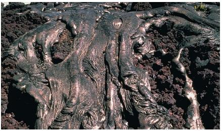 Ropelike, twisted lava such as this is called pahoehoe. (Reproduced by permission of JLM Visuals.)