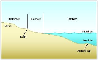 Common Elements Of Beach Topography