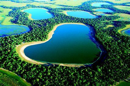 Floodplain The Shape Of The Land Forces And Changes Spotlight - Types of rivers in the world