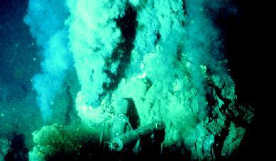 Hydrothermal vents in the Gulf of California's Guaymas Basin. PHOTOGRAPH REPRODUCED BY PERMISSION OF THE CORBIS CORPORATION.