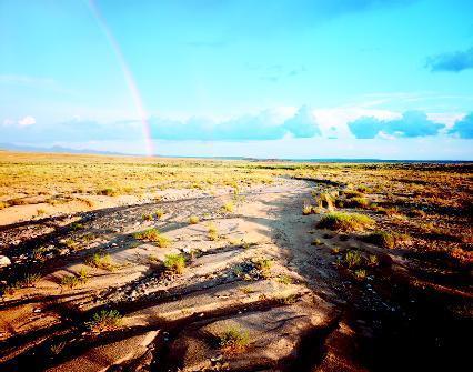 define coastal plain