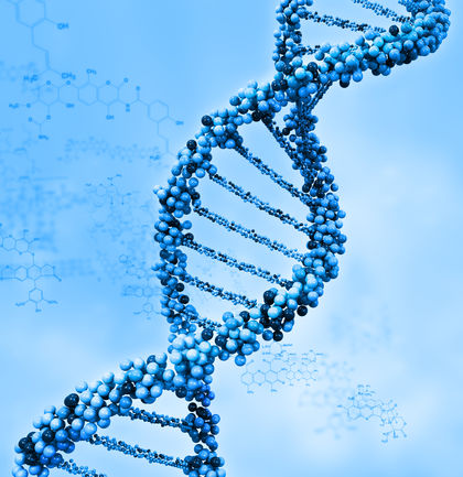 genetics is the future of medicine essay